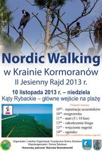 nordicwalking_2013